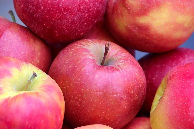 066A salish apples